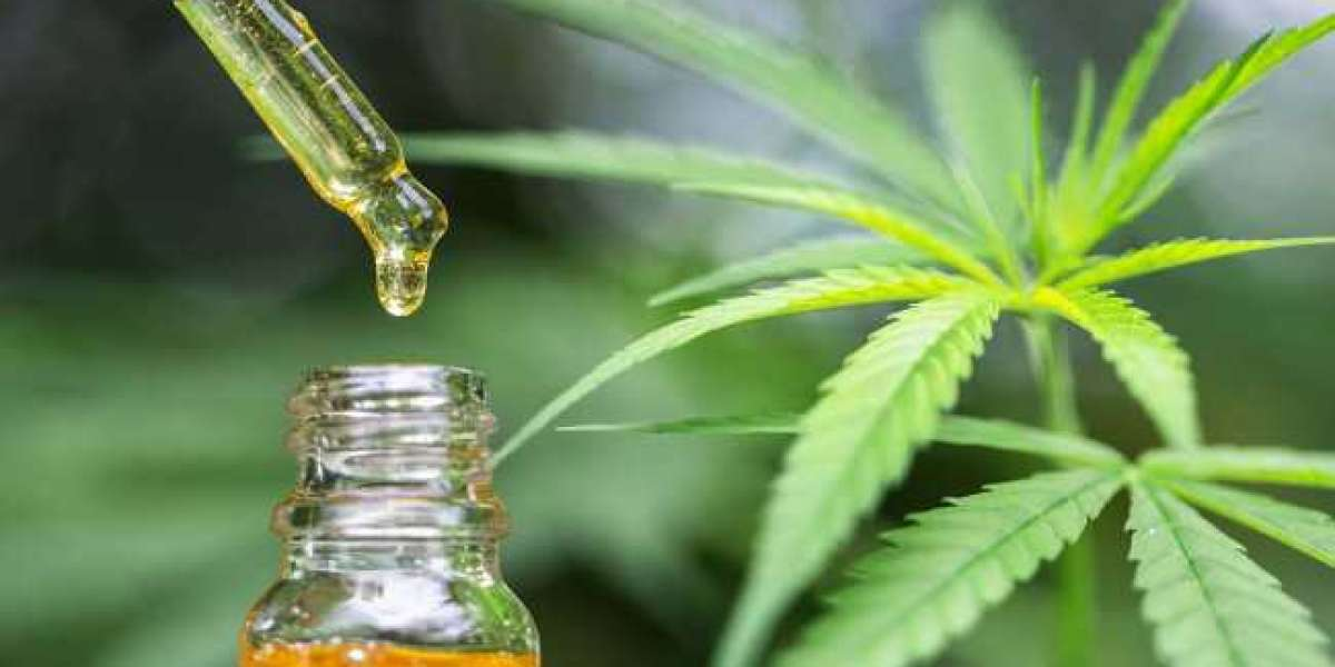 How To Buy A Cbd Oil On A Shoestring Budget