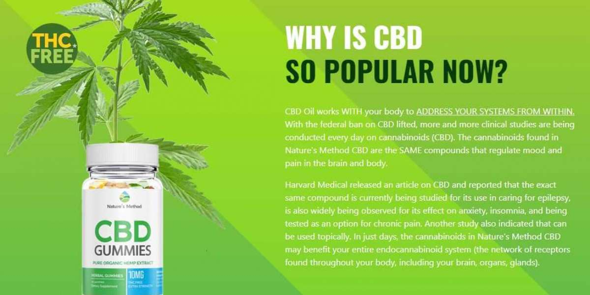 What Are The Benefits Of Using Organic Line CBD Oil UK?