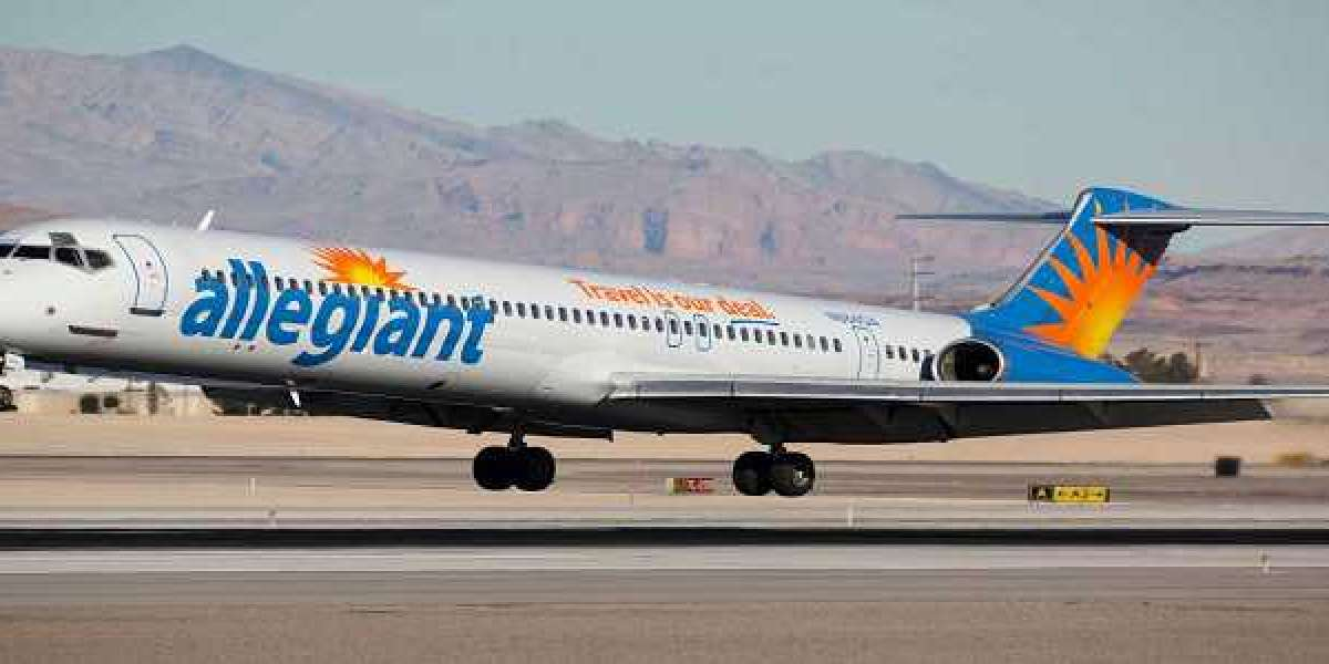 Allegiant Airlines Pet Travel Policy- Travelling with Furry animals onboard!