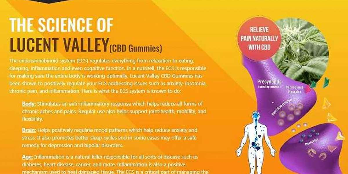 Lucent Valley CBD Gummies : Reviews, Buying Guide |Does It Work|?