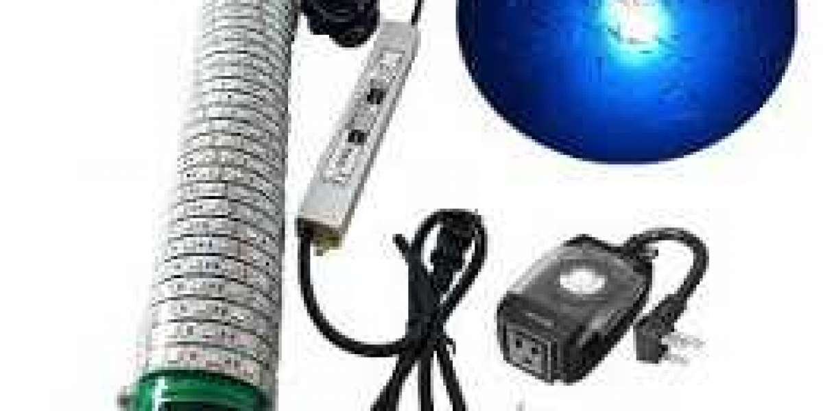 Learn About Various Concepts About Fishing Lights